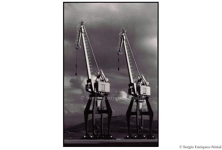 A Couple of Cranes Santander
